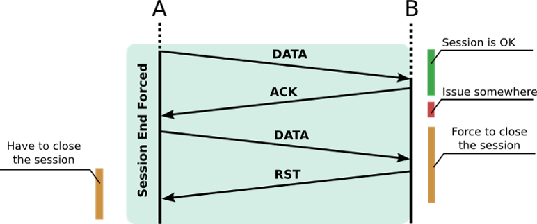 standard_tcp_rst.png